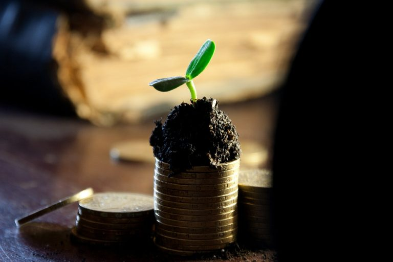 """""""Counting Your Pennies"""" Dividend Investing as an Investment Strategy 